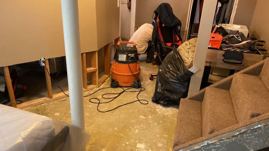Deodorization services provided after a successful mold removal job